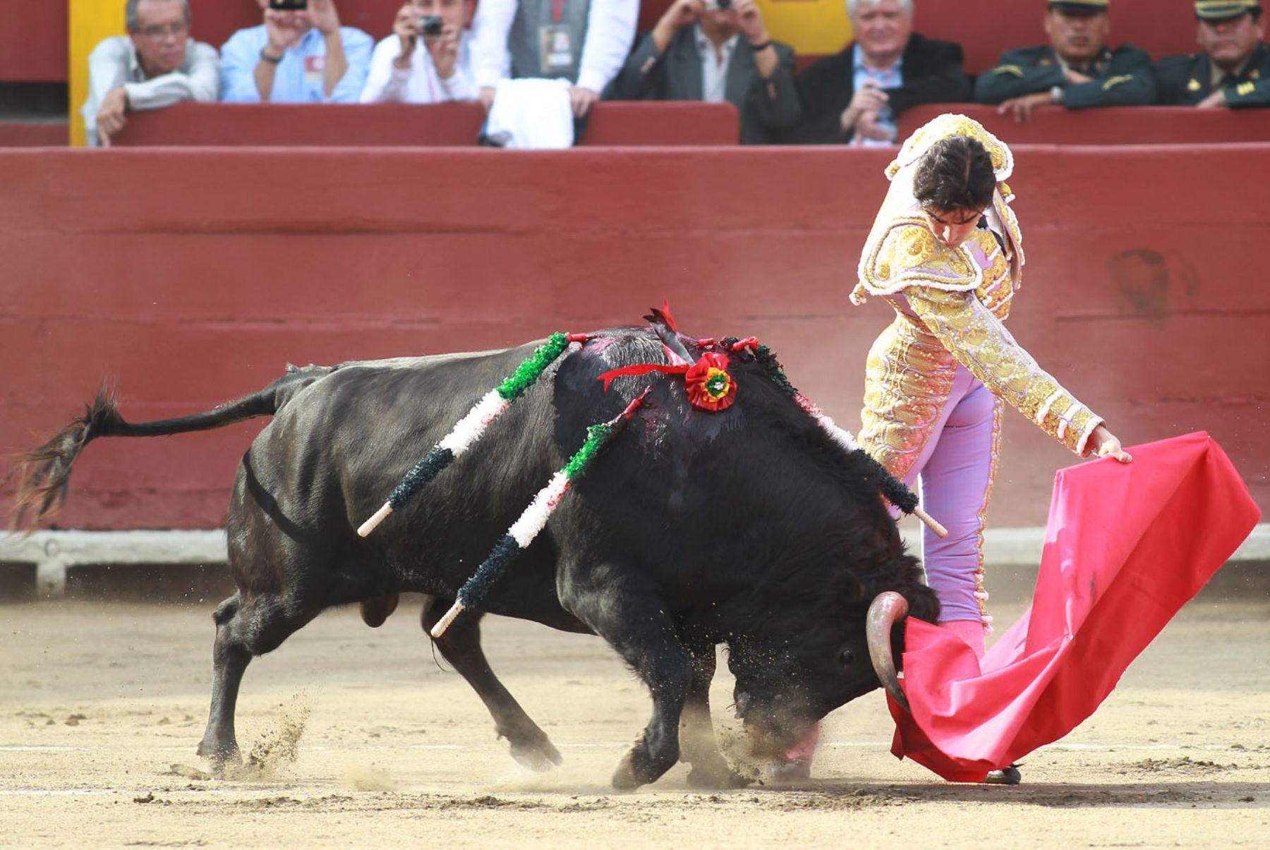 Perú Toro