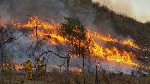 Incendios