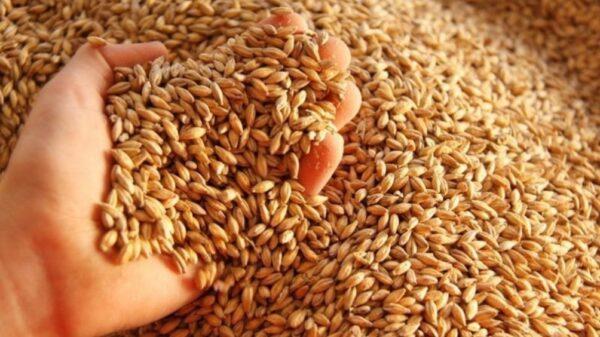 Bolsa de Cereales de Buenos Aires
