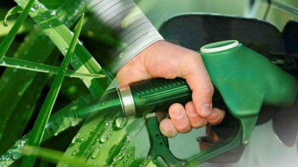 Bioetanol de caña