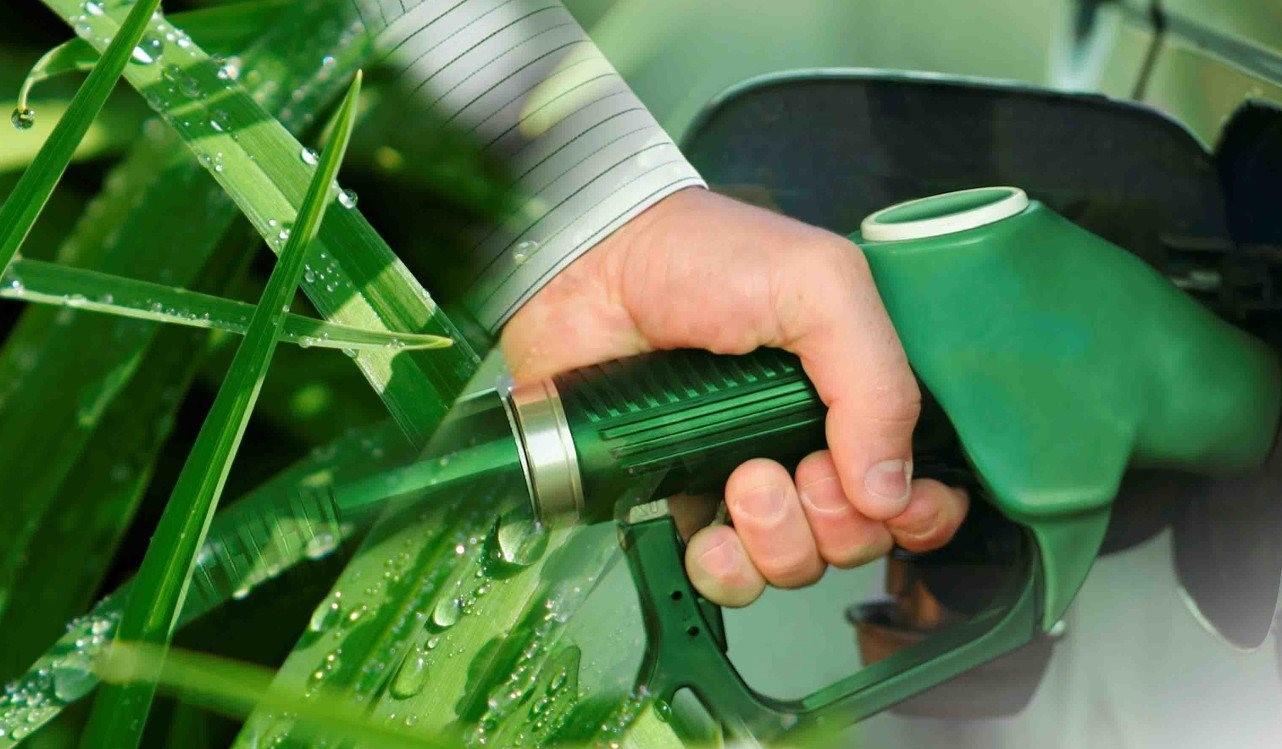 Ley de Biocombustibles