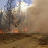 incendio en El Hoyo