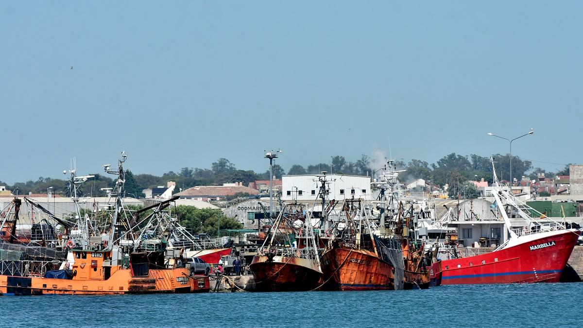 Una firma danesa presenta la única oferta para dragar el puerto de Mar del Plata
